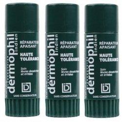 Dermophil Indien Lèvres 2 Sticks + 1 Offert pas cher, discount