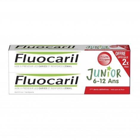 Fluocaril Gel Goût Fruits Rouges Junior 6/12 Ans 2x75ml pas cher, discount