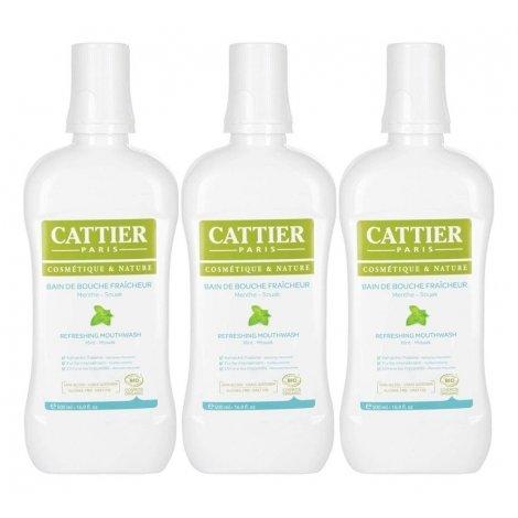 Cattier Trio Pack Bain de Bouche Fraîcheur Menthe - Souak Bio 3x500ml pas cher, discount