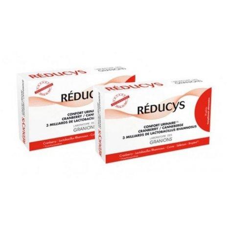 Granions Duo Pack Reducys Confort Urinaire Cranberry 2x30 gélules pas cher, discount