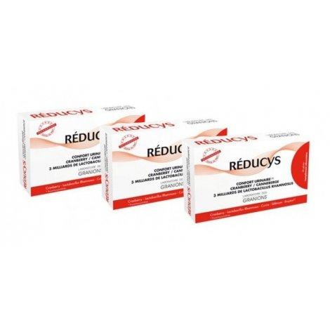 Granions Trio Pack Reducys Confort Urinaire Cranberry 3x30 gélules pas cher, discount
