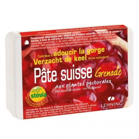 Lehning Pâte Suisse Grenade 40 gommes pas cher, discount