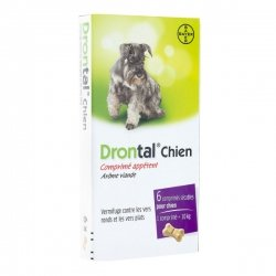 Drontal Chien Vermifuge Vers Ronds & Plats Arôme Viande 6 comprimés