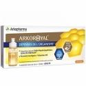 Arkopharma Arkoroyal Défenses de l'Organisme Goût Orange 7 unidoses de 10ml