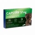 Capstar 57mg  Traitement Anti-Puces Chiens de plus de 11kg 6 comprimés