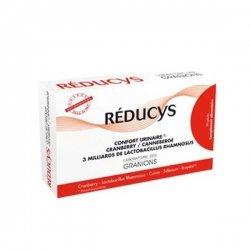 Reducys Confort Urinaire Cranberry Lactobacillus Rhamnosus Cuivre Sélenium Bruyère 30 Gélules pas cher, discount